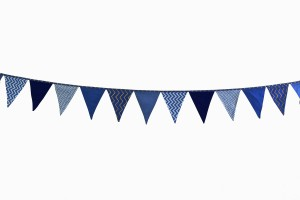 Bunting blue mix